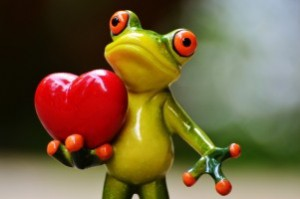 love-valentines-day-pose-heart-funny-frog-animal-1